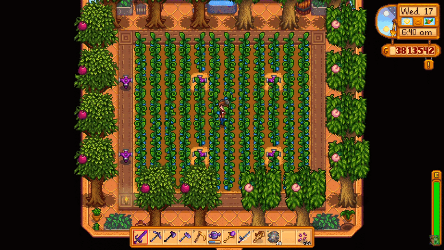 The Best Guide for Stardew Valley Greenhouse Layout ...